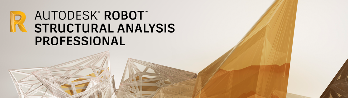 Buy Oem Autodesk Robot Structural Analysis Professional 2016